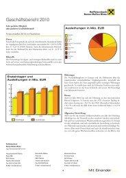 Download Geschäftsbericht 2010 - Raiffeisen Bezau-Mellau-Bizau