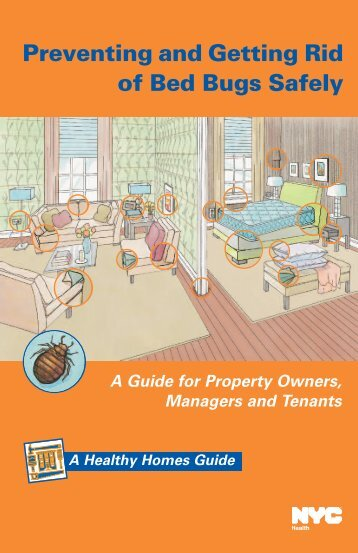 bed-bug-guide