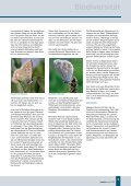 Biodiversität - Ministerium für Umwelt, Landwirtschaft, Ernährung ... - Seite 7