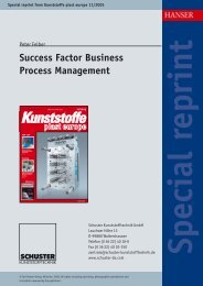 Success Factor Business Process Management - Schuster ...