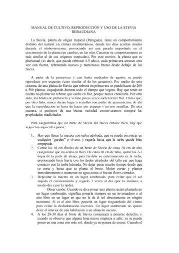MANUAL DE CULTIVO, REPRODUCCIÓN Y USO DE LA STEVIA ...