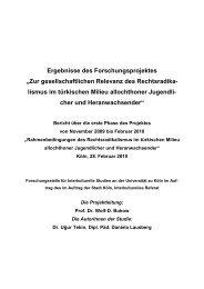 Zur gesellschaftlichen Relevanz des Rechtsradikalismus im ...
