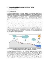 1 Antecedentes teóricos y prácticos de rocas sedimentarias