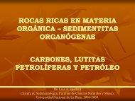 rocas ricas en materia orgánica orgánica - Museo de La Plata ...