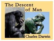 The Descent - Falbe Publishing