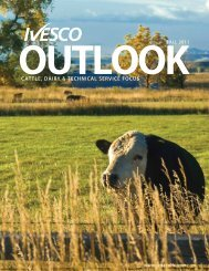 CATTLE, DAIRY & TECHNICAL SERVICE FOCUS - ivesco