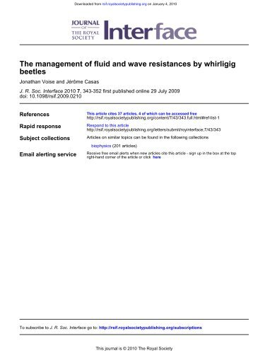 beetles The management of fluid and wave resistances by whirligig