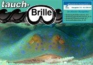 tauch-Brille 01-2010 - STSB