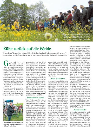 Kühe zurück auf die Weide - Dr. Neinhaus Verlag AG