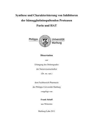 Synthese und Charakterisierung von Inhibitoren - Philipps ...