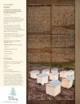 Timber technology - Skog og landskap - Page 3