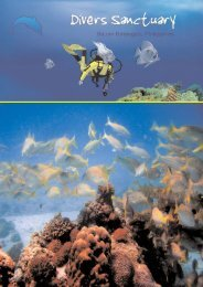 intro to scuba diving