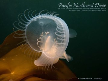 Pacific Northwest Diver - British Society of Underwater Photographers