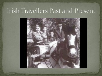 The Irish Travelling Community: An investigation into ... - ENOTHE