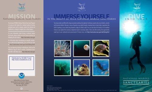 guide to diving America's Marine Sanctuaries - SCUBA Travel