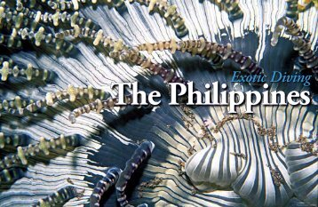 The Philippines Exotic Diving - X-Ray Magazine