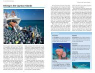 Diving in the Cayman Islands - Lonely Planet
