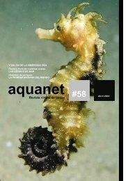 Revista virtual de buceo - SENSACIONES.org