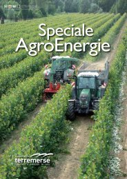 Speciale AgroEnergie - Europa