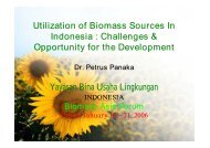 Utilization of Biomass Sources In Indonesia : Challenges ...