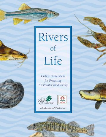 Rivers of Life: Critical Watersheds for Protecting - NatureServe