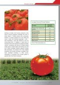 Tomato Paste Exporters - Page 3