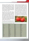 Tomato Paste Exporters - Page 5
