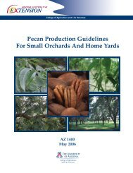 Pecan Production Guidelines For Small Orchards And Home Yards