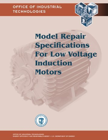 Model Repair Specifications for Low Voltage Induction Motors
