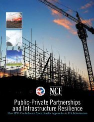 Public-Private Partnerships and Infrastructure Resilience ...