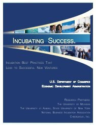 Incubating Success - 2011 EDA Study