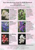 View - Somerset Sweet Peas - Page 5
