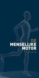 De menselijke motor (pdf) - Suikerinfo.nl
