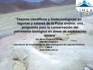 Diapositiva 1 - Ministerio de Ciencia, Tecnología e Innovación ...