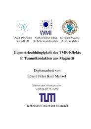 Geometrieabh¨angigkeit des TMR-Effekts in Tunnelkontakten aus ...