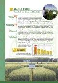Sorteninformation Herbst 2012 - Probstdorfer Saatzucht - Seite 6