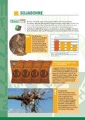 SORTENINFORMATION Getreide, Öl- und ... - Probstdorfer Saatzucht - Seite 4