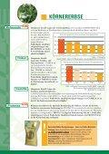 SORTENINFORMATION Getreide, Öl- und ... - Probstdorfer Saatzucht - Seite 6