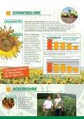 SORTENINFORMATION Getreide, Öl- und ... - Probstdorfer Saatzucht - Seite 7