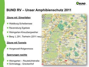 Amphibienwanderung 1999 - 2011 Ravensburg- Egelsee ...