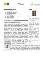 Ausgabe Nr. 19, Mai 2011 - Nadja Hirsch MdEP
