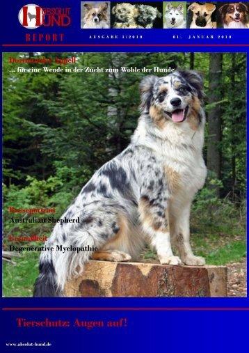 Tierschutz: Augen auf! - Absolut-Hund