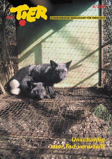Heft 4/2001 - Pro Tier