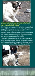 Schulungsmodul 4 - Dogworld-Stiftung - Seite 3