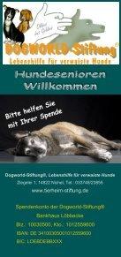 Schulungsmodul 4 - Dogworld-Stiftung - Seite 6