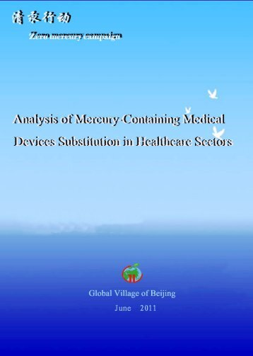Analysis of Mercury-Containing Medical Devices Substitution in