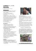 Se programmet her - Dumas-Johansen Specialrejser - Page 7