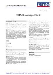 FEMA-Steinreiniger FSV 5 - FEMA Farben + Putze GmbH