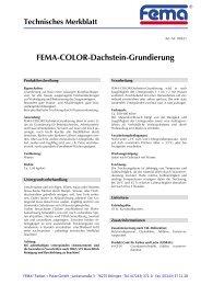 FEMA-COLOR-Dachstein-Grundierung - FEMA Farben + Putze GmbH