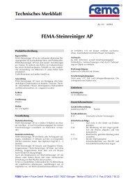FEMA-Steinreiniger AP - FEMA Farben + Putze GmbH